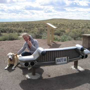 Historic Rt 66 through Petrified Forest N.P.